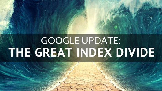 Google Update- The Great Index Divide.png