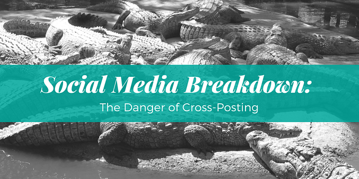 Social Media Breakdown- The Danger of Cross-Posting.png